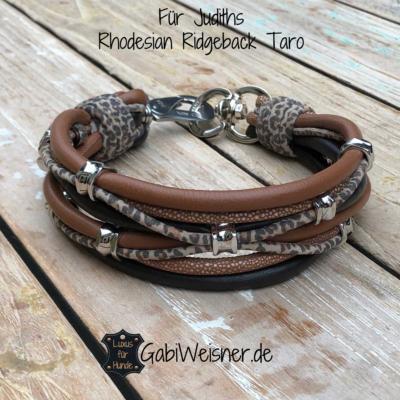 Luxus-Hundehalsband-5-cm-breit-Für-Judiths-Rhodesian-Ridgeback-Taro