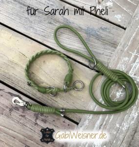 für-Sarah-mit-Pheli-Echse-2