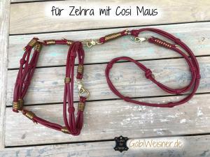 für-Zehra-mit-Cosi-Maus--